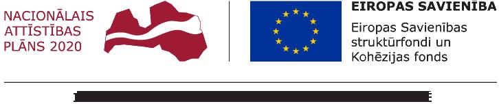 Nacionālais attīstības plāns 2020, Eiropas Reģionālās attīstības fonds, Kompetences centrs